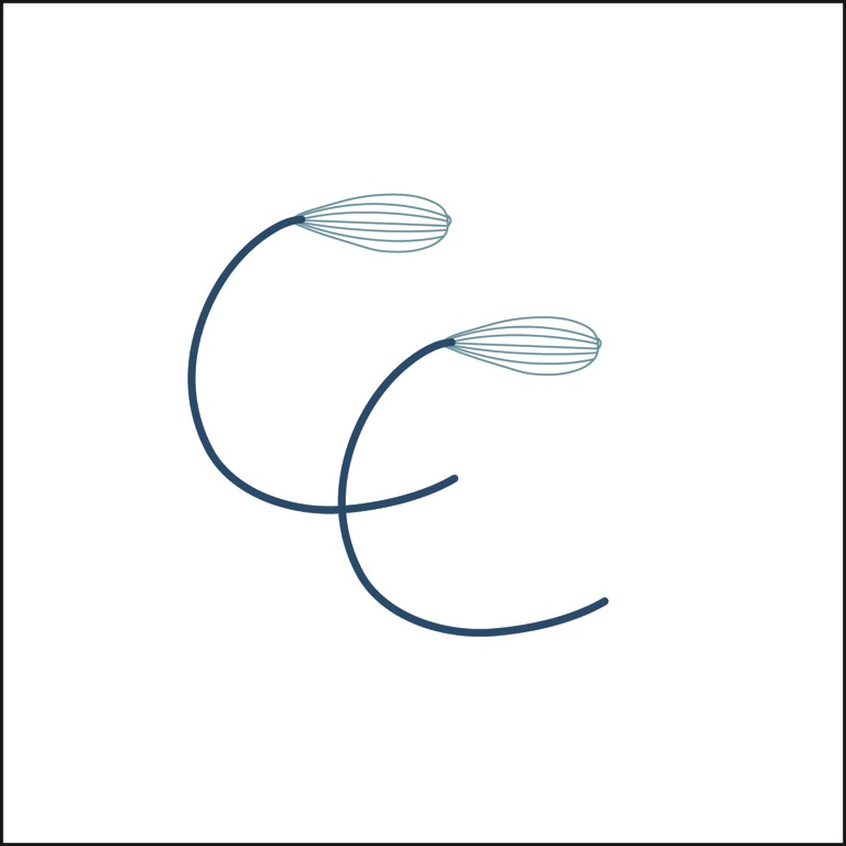 Contact Caroline's Cookery Logo Two large C's with whisks at the top end of them